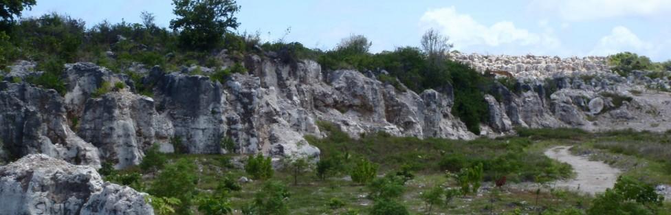 Nauru Land Rehabilitation
